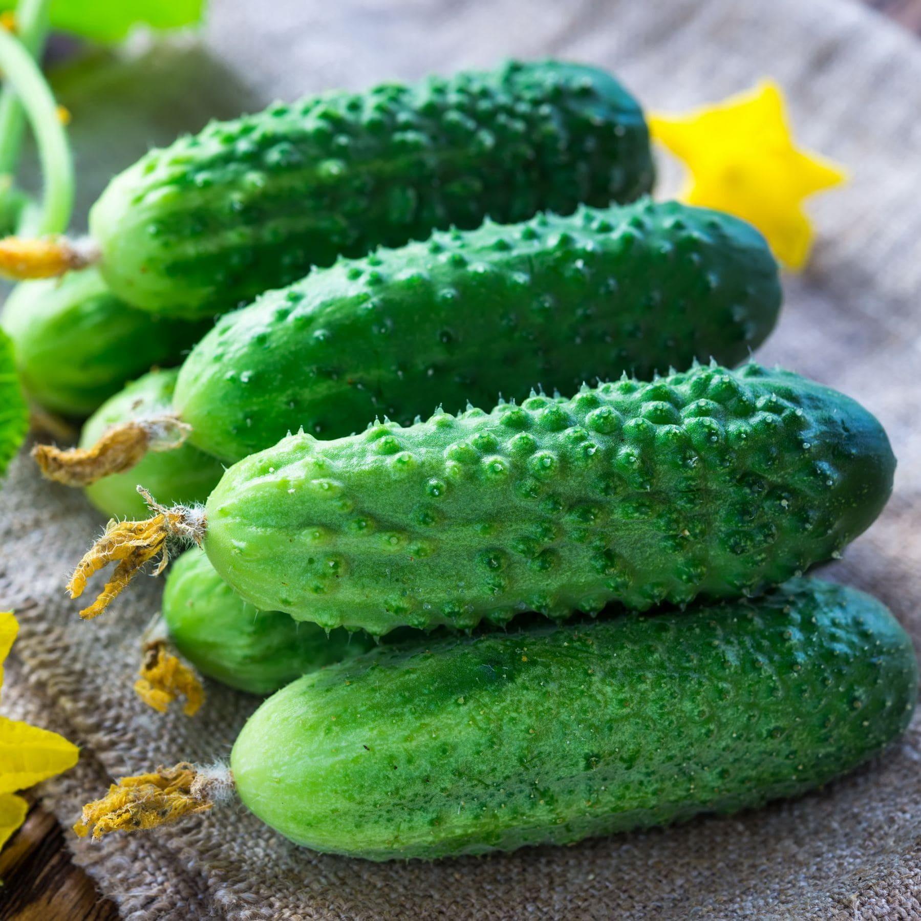 огурцы для салатов