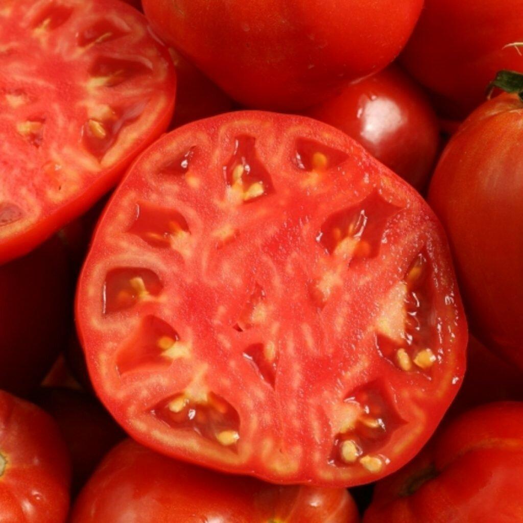 потребительские качества томата джина