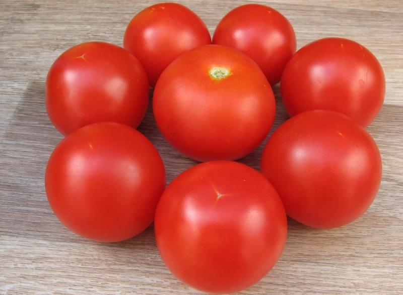 описание сорта томата Санька